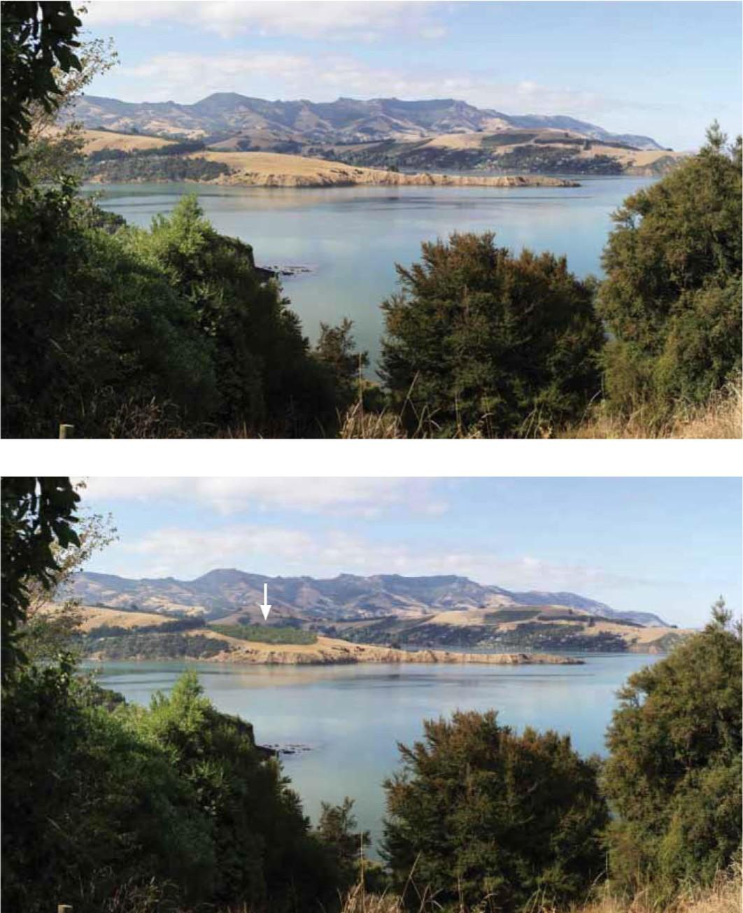 Hammond Point comparison photo