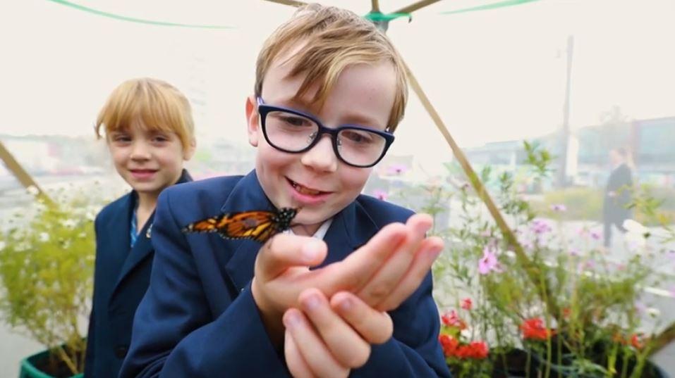 Take Flight - Butterfly House