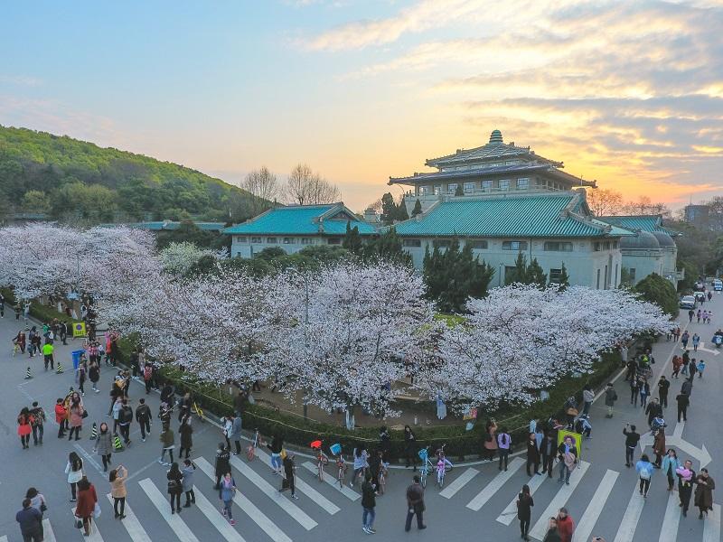 'Wuhan University