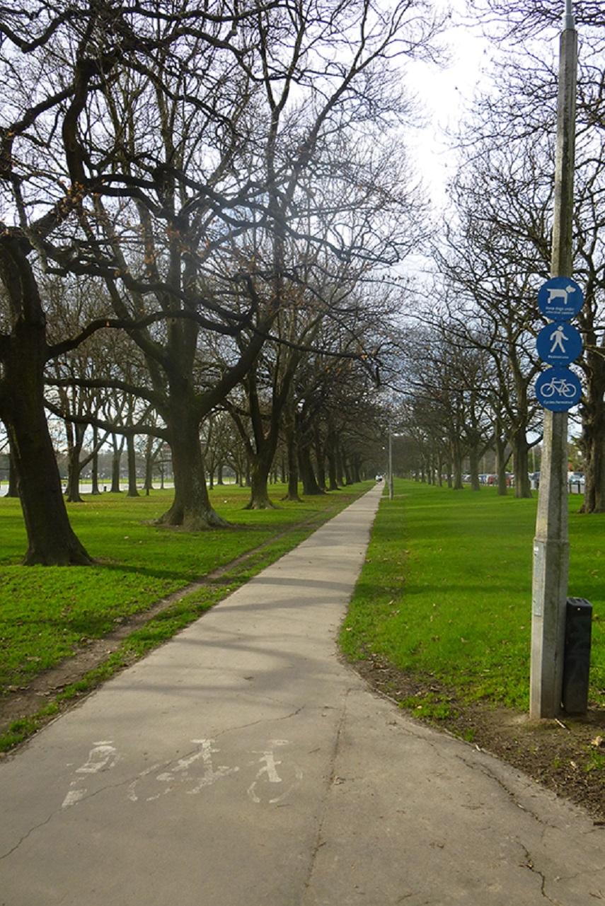 'Hagley cycleway