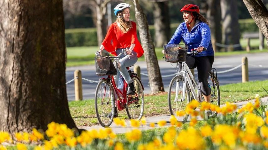 Two people cycling through Hagley Park